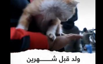 Photo of القط خميس العراقي يؤيد المظاهرات في بغداد
