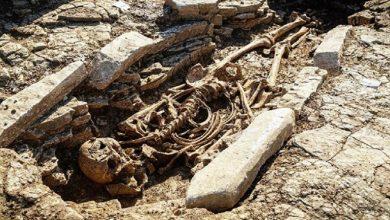 Photo of إنجلترا..اكتشاف أكثر من 50 مقبرة تعود للعهد الروماني