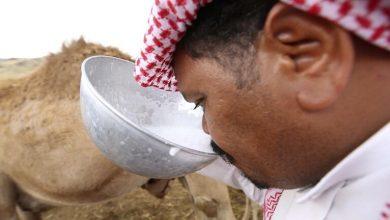 Photo of وزارة البيئة والمياه والزراعة بمحافظة جدة أزالت : 15 حظيرة لبيع حليب الإبل على الطريق بحي المسرة بجنوب محافظة جدة.