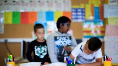Photo of أعلنت هيئة الأمم المتحدة عبر موقعها الرسمي ان في 800 مليون أمي في العالم