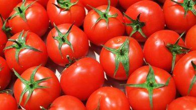 Photo of الأطباء يحددون الأشخاص الذين يجب ألا يتناولوا الطماطم