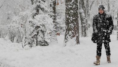 Photo of ألاسكا.. رجل يتجنب ضربة قاضية من أيل بري بطريقة ذكية