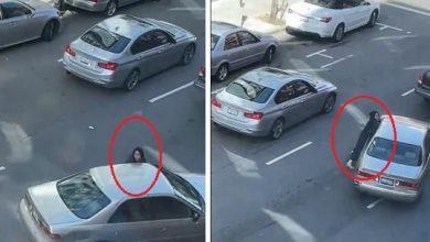Photo of شاهد: ماذا حدث لسيدة حاولت استعادة حقيبتها المسروقة من لصوص أثناء هروبهم بالسيارة!