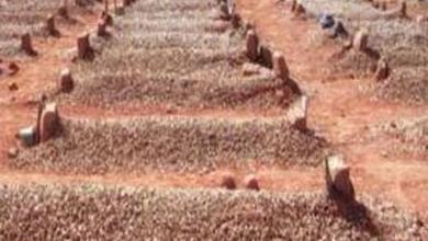 """Photo of دفن """"هندوسي"""" على الطريقة الإسلامية بجازان! .. والقنصلية الهندية تكشف ملابسات ما حدث"""