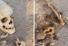 "Photo of شاهد: ظهور ""عظام وجماجم بشرية"" فوق الأرض في الأفلاج.. والكشف عن السبب"
